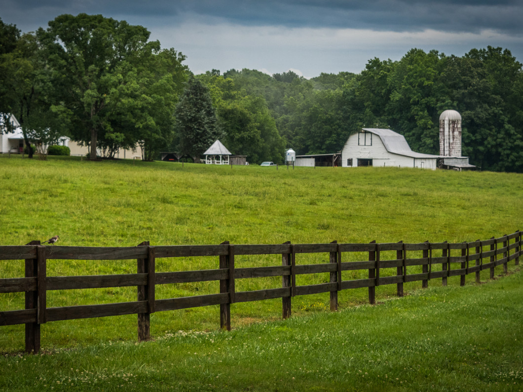 Make sure you have the best farm insurance in Hot Springs, Arkansas